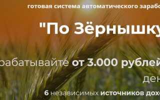 Курс по Зёрнышку — система автоматического заработка от 3000 рублей в день