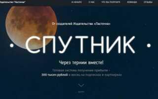 Обзор курса Спутник: заработок на подписках и пратнерках