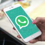 Как добавить контакт в Ватсапе по номеру телефона на Айфоне и Андроиде